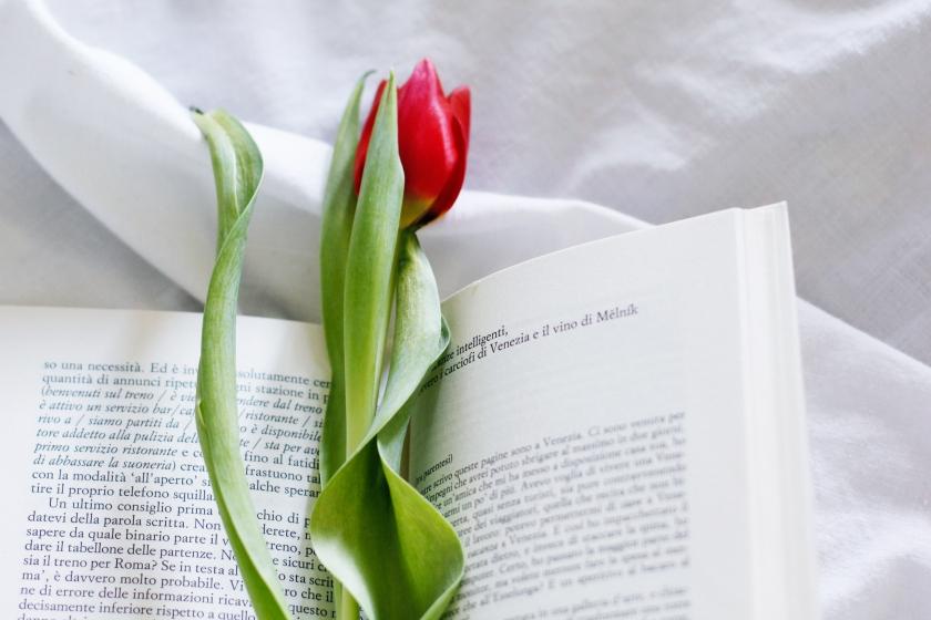 libro-maria-perosino-io-viaggio-da-sola-recensione